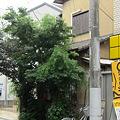 Photos: 藪蕎麦@北習志野(1)
