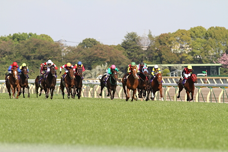 2011 satsuki1