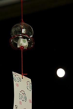 豚と共に月を見る