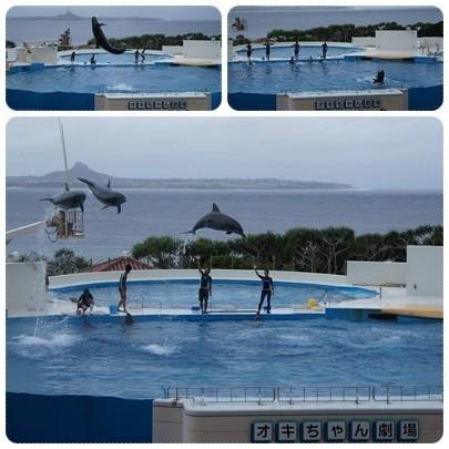 20120603 美ら海水族館3