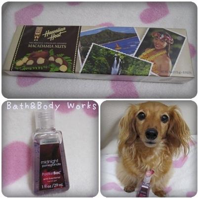 20110727 Hawaii土産