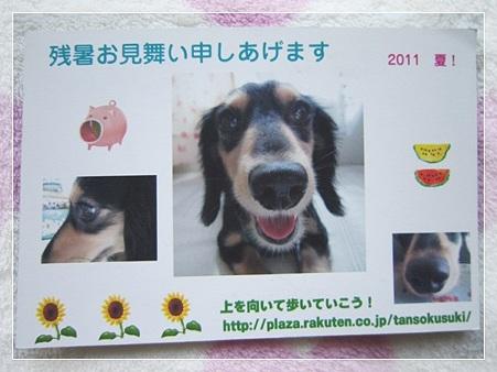 20110818 wakabaさんから〜♪