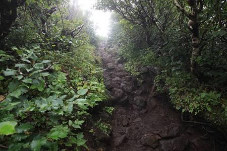 利尻岳-20100814-080327