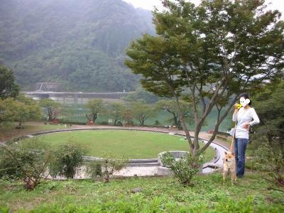 またまた津久井の公園