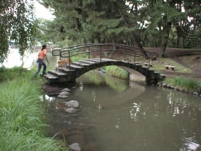 池や・・・