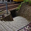 写真: 石段を駆け上がると・・・