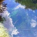 Photos: 忍野八海、お釜池。水がとっ...