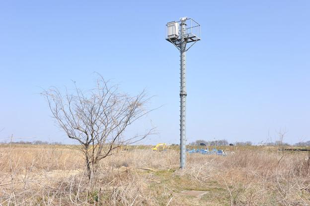 <入間川*水位計測・デジタル>