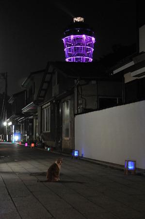 江ノ島灯籠2010 03