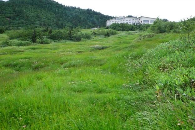 Photos: ガキの田より弥陀ヶ原ホテルを見る