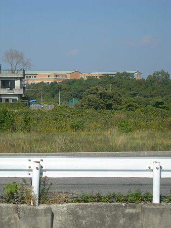 道の駅あわじ31